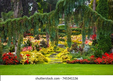 The tropical garden in Norway, rainy weather