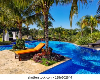 Tropical garden with pool