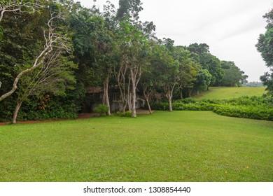 Tropical Garden scenes, Bentota, Sri Lanka