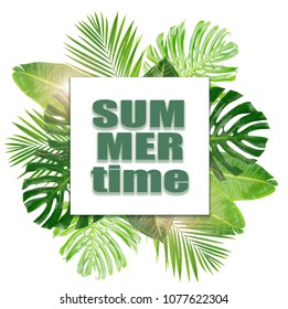 Tropical green leaves with summer time words layout isolated on white background