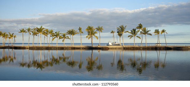 Tropical Hawaiian beach with coconut palm trees, morning blue sky and turquoise waters