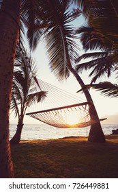 Tropical Hawaiian hammock at sunset