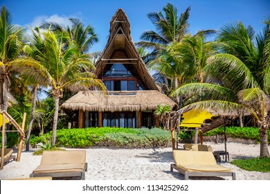 Tropical Home on Beach with Thatched Roof and Day Beds with Palm Trees and Sun with Blue Sky