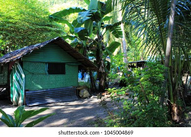 Tropical house under palm trees