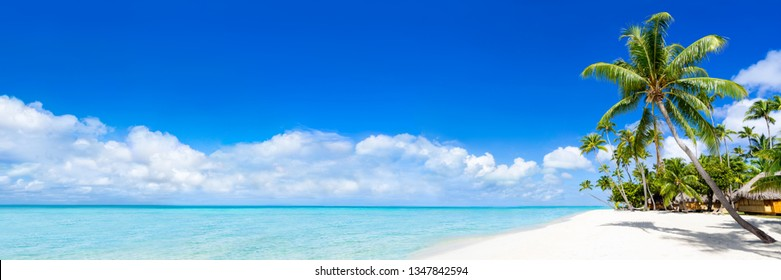 Tropical island with beautiful beach and turquoise water as panorama background