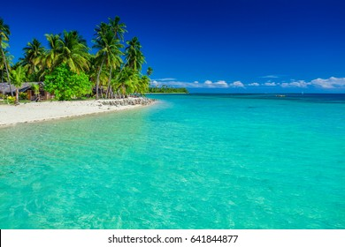 Tropical island in Fiji, palm trees and the sandy beach, Plantation Island