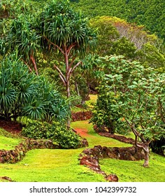 Tropical island pathway lined with volcanic rocks leads uphill
