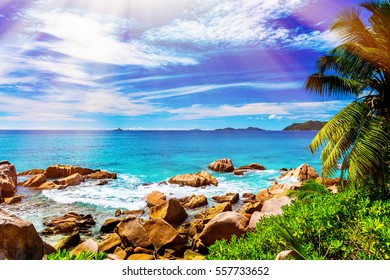 Tropical island. The Seychelles.Toned image.
