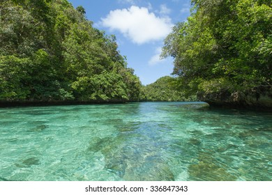Tropical lagoon with lush green rock islands and clear blue water, Palau, Micronesia