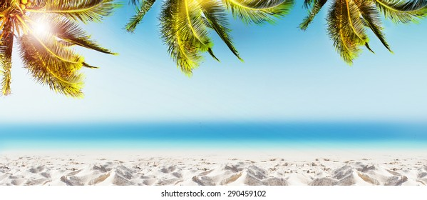 Tropical landscape with coconut palm tree, white sand beach and blurry ocean. Design banner background. Panoramic view.