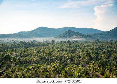 Tropical landscape coconut palm trees with layer mountain and fog at morning, is Samui island at Thailand