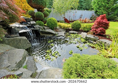 Tropical landscape design on backyard. View of small pond, trimmed bushes and small waterfall