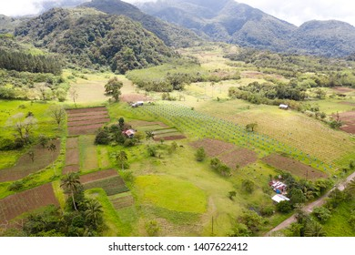Tropical landscape with gardens and orchards, view from above. Farming on Camiguin Island, Philippines.