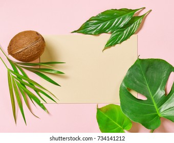 tropical leaves and coconut on colorful paper background, top view