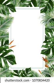 tropical leaves frame isolated on white background.