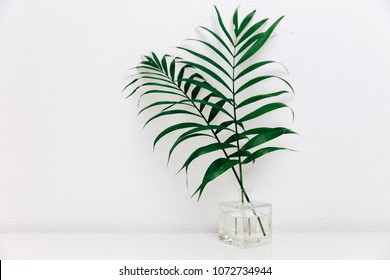 Tropical leaves in glass bottles on white barn wall background, cottage interior decoration