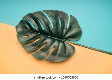 tropical leaves monstera on a yellow-blue summer background, top view flat lay
