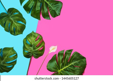Tropical leaves Monstera, Swiss Cheese Plant, and beautiful white flower spathiphyllum on pink blue background. Beauty Spa facial treatment concept. Flat lay, top view.