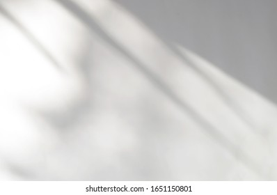 Tropical leaves natural shadow overlay on white texture background, for overlay on product presentation, backdrop and mockup, summer seasonal concept - Shutterstock ID 1651150801