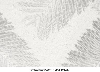 Tropical leaves natural shadow overlay on white texture background, for overlay on product presentation, backdrop and mockup, fall autumn seasonal concept