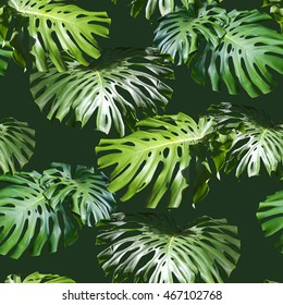 Tropical leaves pattern. Green leaf monstera seamless. Artistic photo collage for floral print. With soft focus effect