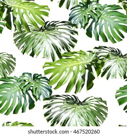Tropical leaves pattern. Green leaf monstera seamless. Artistic photo collage for floral print. With soft focus effect.