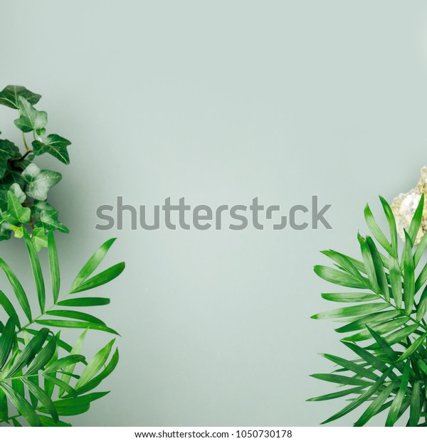 Tropical leaves and plants  on a green background with space for text. Top view, flat lay.