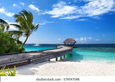 Tropical Maldives island with coconut palm tree, wooden bridge and water villa. Exotic landscape.