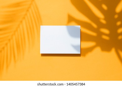 Tropical monstera palm leaf shadow on a white card frame. Orange summer poster.