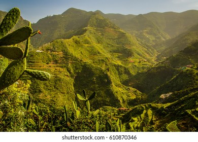 Tropical Mountains in Anaga Rural Park, Tenerife, Canary Islands