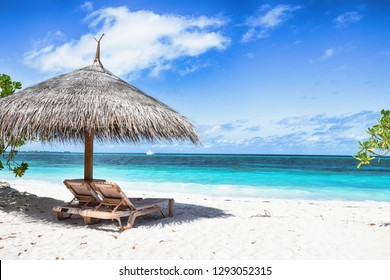 Tropical nature landscape. Sunbeds on sandy beach. Beautiful coast.