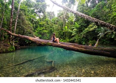 Tropical North Queensland Landscape, Australia