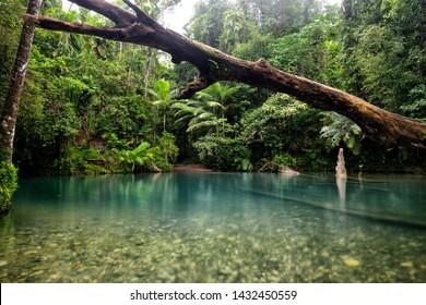 Tropical North Queensland, landscapes Australia.