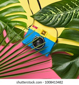 Tropical Palm Green Leaves Background. Colorful Hot Summer Vibes. Fashion concept. Trendy Retro Design camera. Minimal
