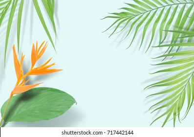 Tropical palm leaves frame on yellow background. Minimal nature. Summe