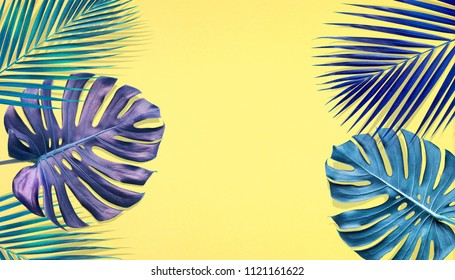 Tropical palm leaves and monstera with copy space on pastel color background.Nature and holiday summer concepts.Floral elements