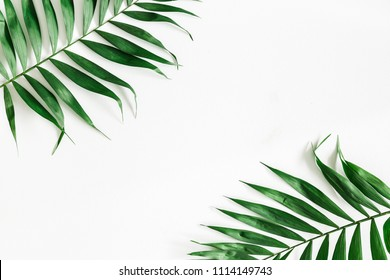 Tropical palm leaves on white background. Summer concept. Flat lay, top view, copy space, close up