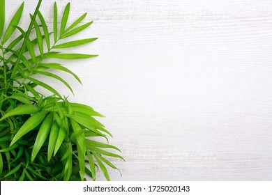 Free Background High Res Stock Images Shutterstock