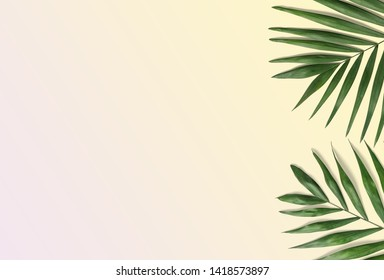 Tropical palm leaves on yellow anh pink background for design. Summer Styled. High quality image - Top view