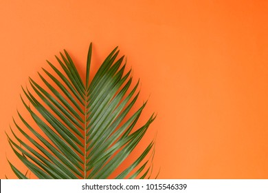 Pastel Orange Images Stock Photos Amp Vectors Shutterstock