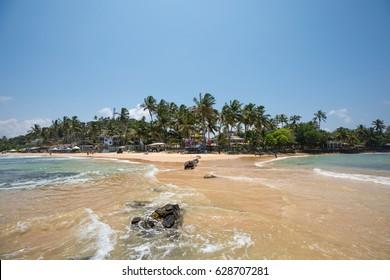Tropical paradise beach with ocean and palm trees in Mirissa, Sri Lanka.