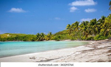 Tropical paradise beach on Contoy Island in Mexico
