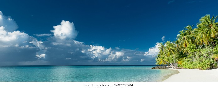 tropical paradise beach panorama with white sand and coconut palm trees
