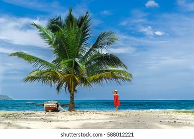 Tropical Paradise Boat Beach Palmtree Woman