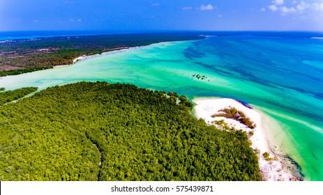 Tropical paradise island Zanzibar aerial view. Place the mangrove forest of Michamvi
