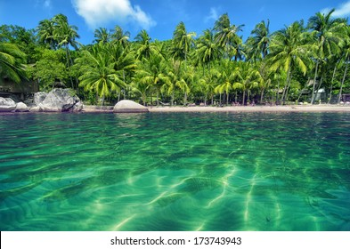 Tropical Paradise with Turquoise Water and Lush Greenery - Lovely Beach on an island