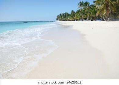 Tropical paradise: white sand beach island with tall palm trees in green caribbean ocean