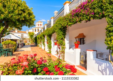Tropical plants in front of a typical house in small village near Marbella. Andalusia, Spain