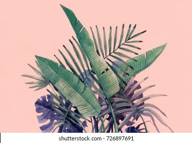 Tropical plants. nature background. watercolor illustration