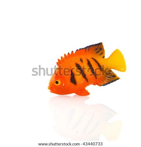Tropical Plastic Orange Fish Black Stripes Stock Photo Edit Now